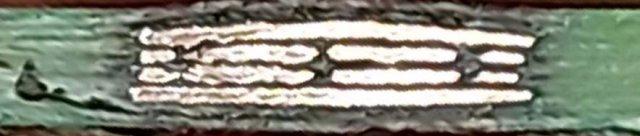 20200913_193144.thumb.jpg.a2b18eee903504f191328921a58d61da.jpg